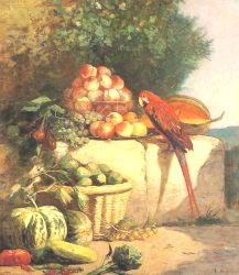 Fruit And Vegetables With A Parrot