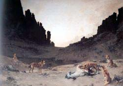 Dogs Of The Douar Devouring A Dead Horse
