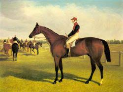 Don John - The Winner Of The St. Leger With William Scott Up