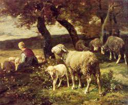 Shepherdess And Sheep