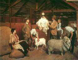 Weighing The Fleece